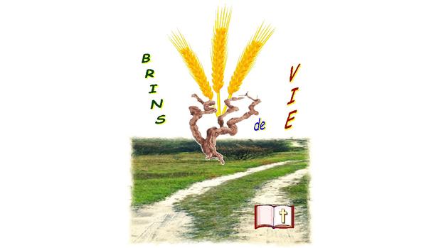 Logo Brins de vie_s