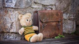 teddy_teddy_bear_stuffed_animals_stuffed_animal_bears_soft_toy_schoolbag_leather_case-712844